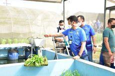 Ekspor Pertanian Naik Rp 451,77 Triliun, Komite II DPD RI Apresiasi Kementan