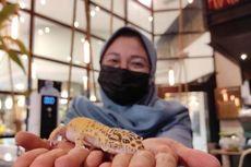 Minum Kopi Sambil Main Bersama Reptil, Konsep Kafe Kopi di Medan