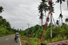 Gempa Maluku Utara Rusak Jaringan Listrik di Halmahera Selatan
