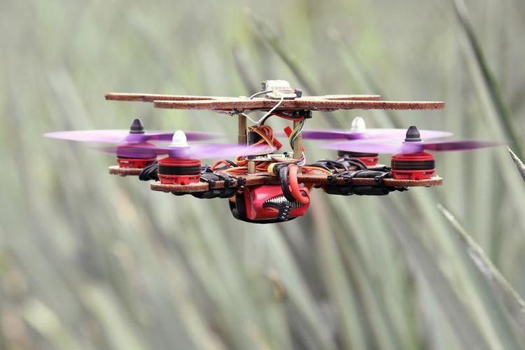 Peneliti asal Malaysia ciptakan kerangka drone yang terbuat dari serat daun nanas