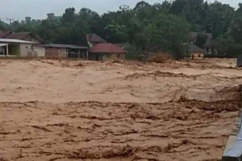 Banjir Jakarta, Ini yang Harus Dilakukan Jika Bertemu Ular