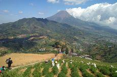 Syarat Mendaki Gunung Prau yang Rencananya Buka 27 Juli 2021