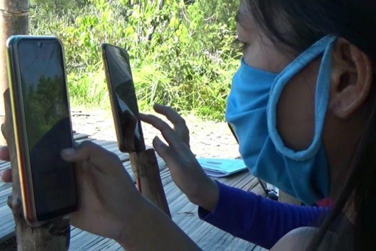 Sejumlah mahasiswa rela berburu jaringan internet hingga ke puncak gunung Mamasa demi kuliah online.