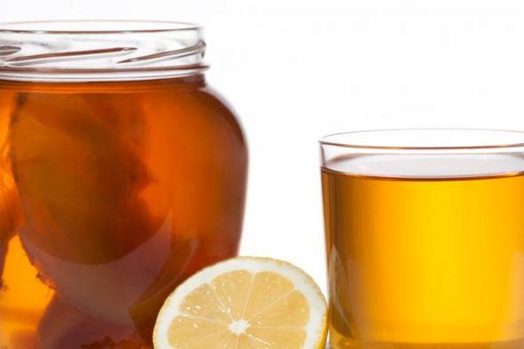 Ilustrasi Kombucha tea.