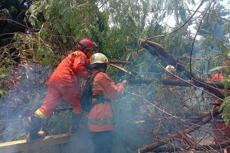 Pohon tumbang menutup jalur bus transjakarta di Jalan Ahmad Yani, Matraman, Jakarta Timur, Jumat (2/10/2020)