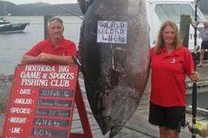 Nelayan Wanita Tangkap Ikan Tuna 411 Kilogram
