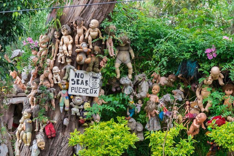 Pulau yang hanya dihuni oleh boneka bernama Island of the Dolls di Meksiko.
