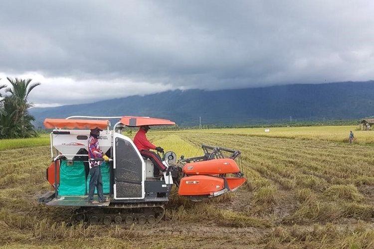 Lahan pertanian.