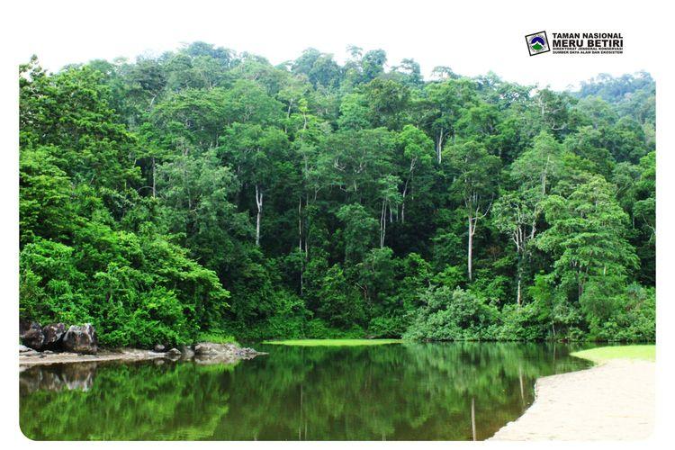 Destinasi wisata yang dikelola Taman Nasional Meru Betiri sudah mulai dibuka sejak 7 September 2021