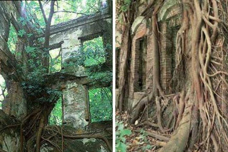 Sebuah rumah yang dikabarkan berhantu di dekat Taman Pemakaman Gunung Yijian di Minxiong, Chiayi County, Taiwan.