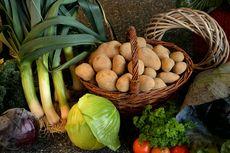 Tips Belanja Sayur Online Saat Malas Keluar Rumah
