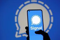 Signal Catat Pertumbuhan Tertinggi Setelah WhatsApp Ubah Kebijakan