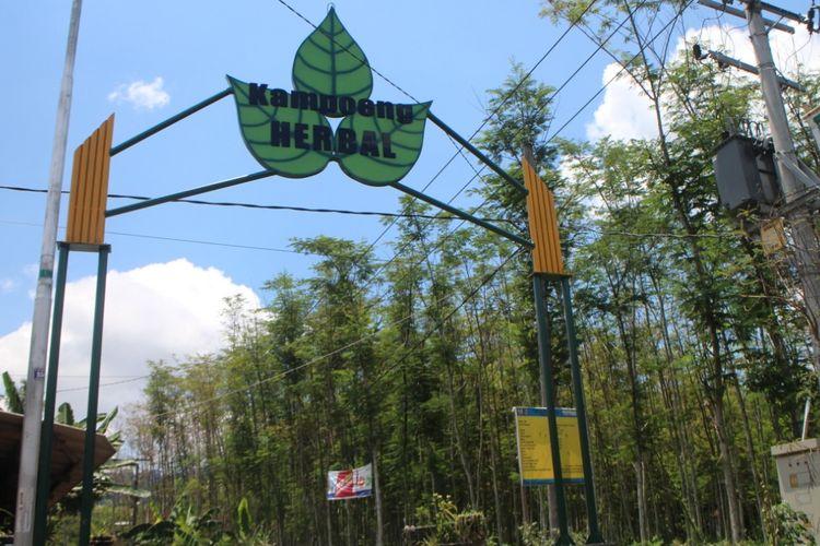 Gerbang menuju kampung herbal di Desa Andongrejo Kecamatan Tempurejo Jember, tempat ini sekaligus menuju lahan Taman Nasional Meru Betiri