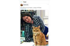 Bob, Kucing yang Selamatkan Hidup James Bowen dari Narkoba, Mati