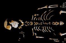 Kok Bisa Neanderthal Punya Otak Lebih Besar dari Kita?
