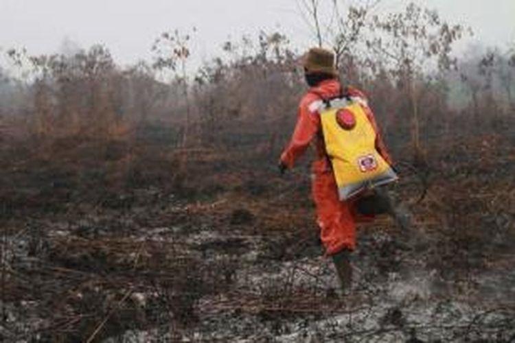Ilustrasi: pemadaman kebakaran hutan.