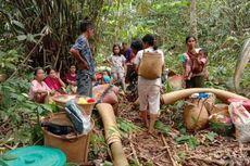 Terdampak Banjir Kalsel, Desa Dayak Meratus Rusak Diterjang Longsor, Warga: 4 Lumbung Padi Kami Rusak