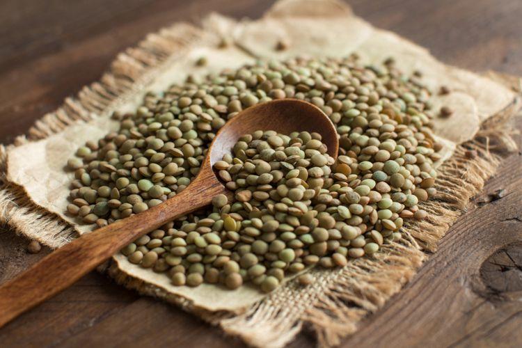 Ilustrasi kacang lentil