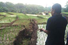 Tanah Bergerak di Cianjur, 1 Rumah Rusak Berat hingga Sawah Gagal Tanam