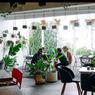 8 Cafe di Malang dan Batu, Harga Makanan Terjangkau Mahasiswa