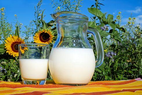 Cara Membekukan Susu di Freezer, Bisa Awet Sampai Tiga Bulan