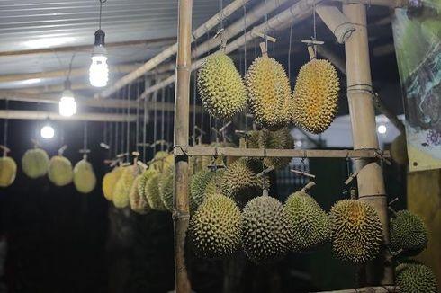 Durian Asli Lasem dengan Rasa Pahit-Manis...