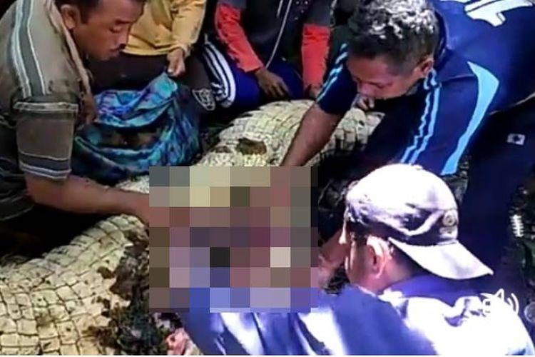Warga Desa Waepandang, Kecamatan Kepala Madan, Kabupaten Buru Selatan, Maluku membelah perut seekor buaya yang mereka tangkap kemudian mereka mengeluarkan potongan tubuh warga setempat yang menjadi korban buaya, Selasa (16/4/2019) pekan lalu.