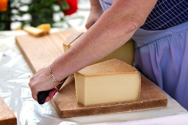 Ilustrasi keju - Seorang wanita sedang memotong keju Swiss bernama Gruyere.