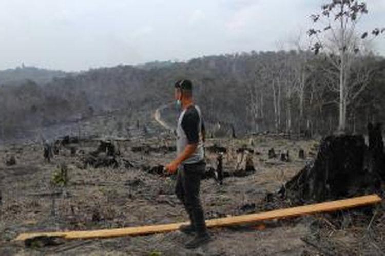Pihak BOSF mengklaim setidaknya 200 ha lebih lahan terbakar kali ini. Ia memperkirakan 80.000 pohon rusak, mulai gaharu, meranti, bengkirai, hingga beragam pohon buah, dengan usia 10-15 tahun.
