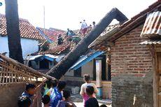 Pohon Palem Berusia 55 Tahun Tumbang dan Timpa 2 Rumah, Seorang Bayi Terluka