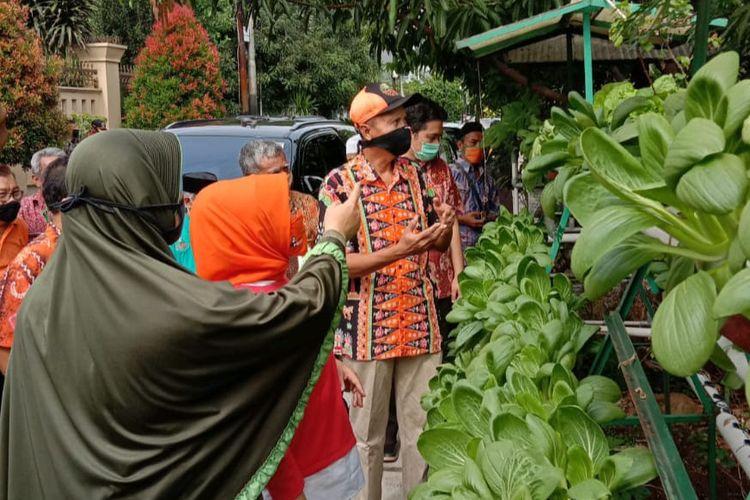 Panen bersama sayuran hidroponik di kawasan Kelurahan Cempaka Putih Timur, Kamis (28/5/2020)