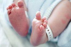 Melihat Fenomena Bayi yang Lahir dengan 3 Penis