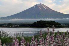 Di Cathay Pacific Travel Fair, Paket Wisata ke Jepang 5 Hari Hanya Rp 12 Juta