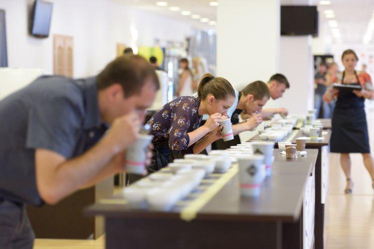 Ilustrasi barista sedang mencicipi kopi dalam coffee cupping.