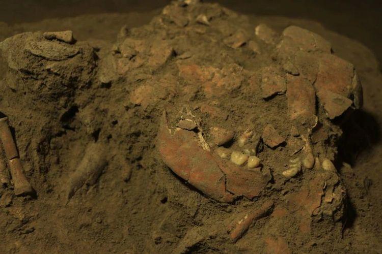 Tim peneliti Australia, Indonesia, dan Jerman berhasil mengungkap DNA dari fosil manusia purba, diperkirakan wanita remaja yang hidup 7.200 tahun silam, di Leang Panning (Gua Kelelawar) di Mallawa, Kabupaten Maros, Sulawesi Selatan. Fosil ini diberi nama Besse, merujuk pada penyebutan anak perempuan dalam etnis Bugis-Makassar.