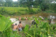 Cari Potongan Tubuh Korban Mutilasi, Warga Masuk Dalam Rawa Bongkar Eceng Gondok