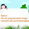 Pertumbuhan Tanaman Paku Menggunakan Spora, Jawaban Soal TVRI 14 Juli SD Kelas 4-6
