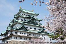 Aichi, Destinasi Terbaik di Jepang untuk Menikmati Pemandangan Sakura