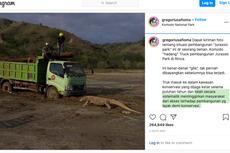 Polemik Jurassic Park di TN Komodo, Ini Kata Pengamat Pariwisata