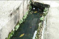 Pihak Kelurahan Sebut Sering Usulkan Normalisasi Saluran Air di Mangga Besar