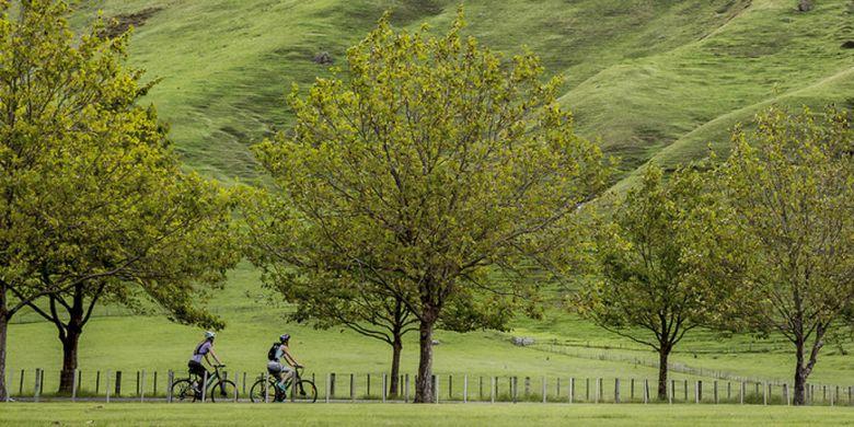 Bersepeda, salah satu aktvitas yang bisa dilakukan saat berlibur di Selandia Baru.