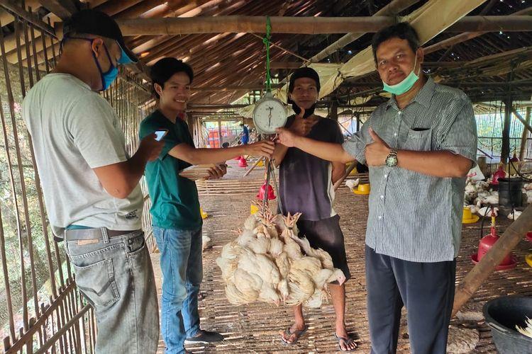 Kementan akan terus mengingatkan perusahaan mitra untuk membeli ayam ras (livebird) dari peternak mandiri.