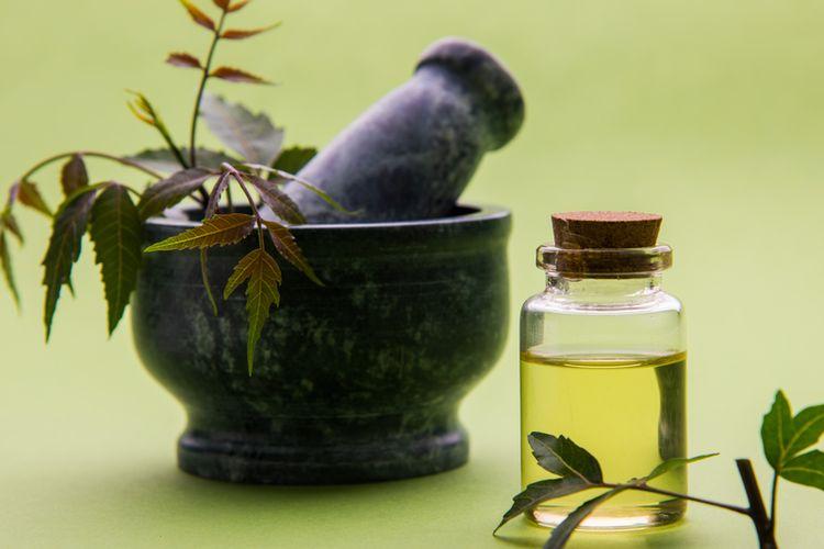 Ilustrasi minyak nimba atau neem oil.