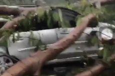 Tertimpa Pohon Tumbang di Kembangan, Sebuah Mobil Rusak Parah