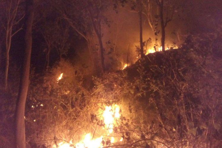 Ilustrasi: Kebakaran hutan melanda kawasan hutan di Desa Poko, Kecamatan Jambon, Kabupaten Ponorogo Senin ( 14/8/2017) malam. Diduga sumber api berasal dari sisa pembakaran sampah yang dibakar seorang penderita gangguan jiwa.