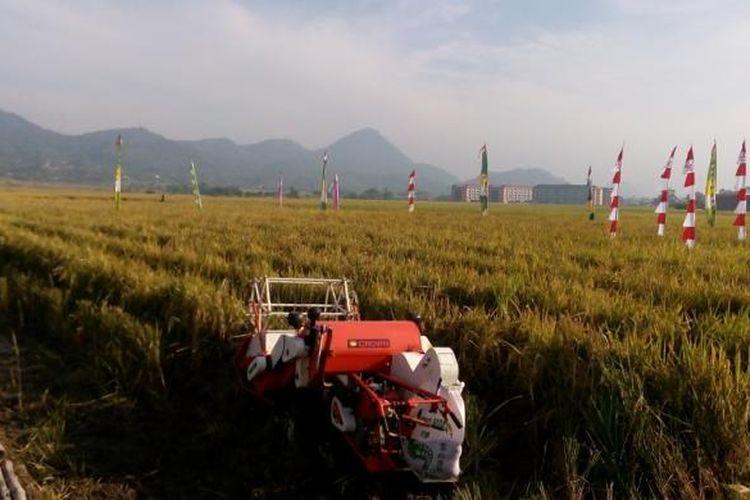 Gerakan Peningkatan Luas Tambah Tanam dan Serap Gabah Petani di Kutawaringin, Soreang, Bandung, Jawa Barat, Rabu (20/7/2016).