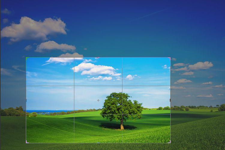 ilustrasi cropping foto