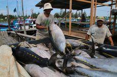 Penangkapan Ikan Terukur Berlaku 2022, Ini Zonasi dan Alat Tangkapnya