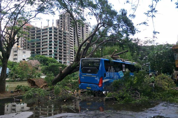 Sebuah pohon tumbang akibat angin kencang menimpa bus Transjakarta di dekat Halte Busway Ancol, Jakarta Utara pada Selasa (8/12/2020).