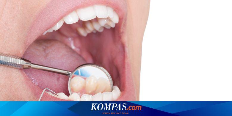 Osteoporosis Di Rongga Mulut Meningkat Pada Lansia Perempuan Ini Penyebabnya Halaman All Kompas Com
